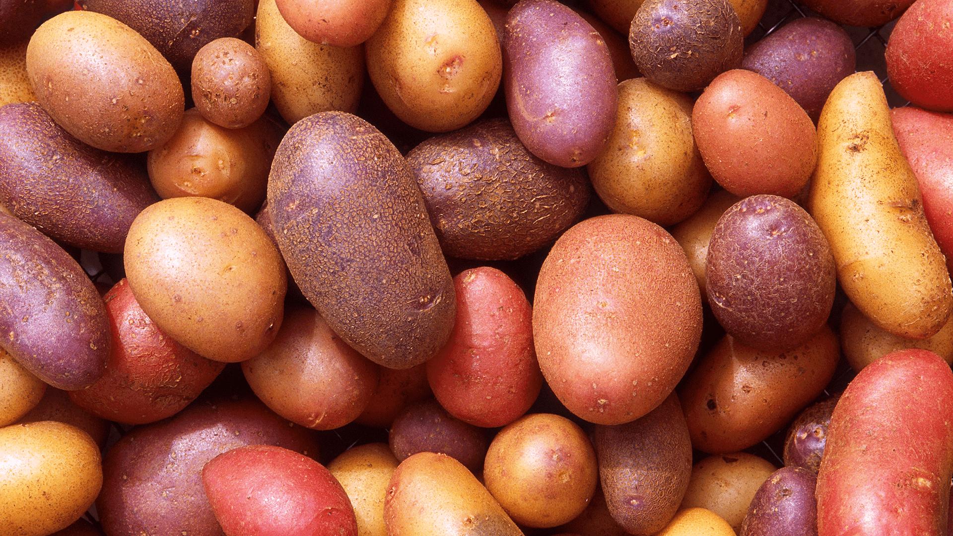 Cartofi în Coajă